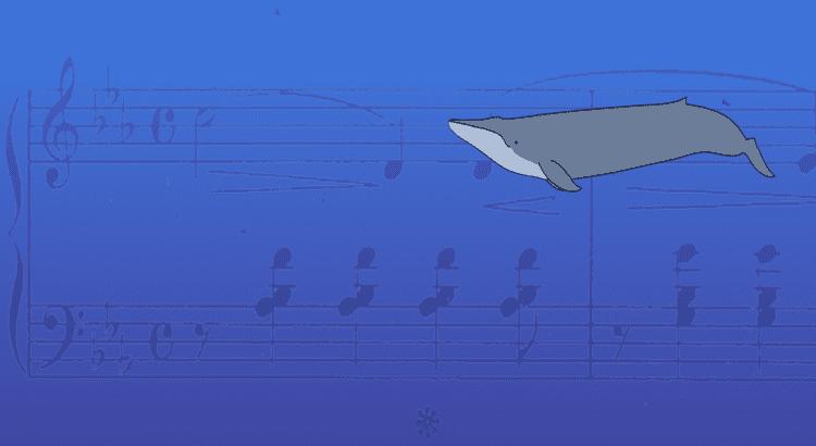 52-hertz whale Understanding the Search for 52 Hertz MIT SciWrite