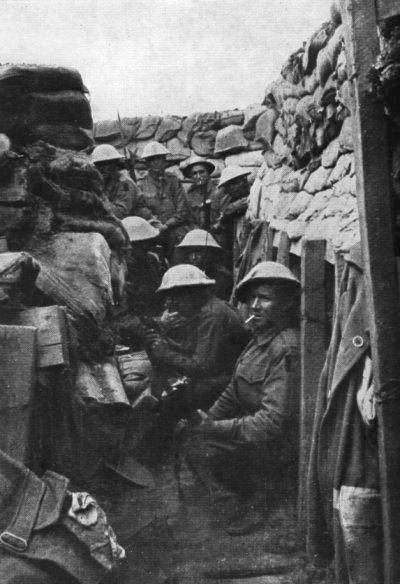 53rd Battalion (Australia)