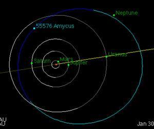55576 Amycus httpsuploadwikimediaorgwikipediacommonsthu