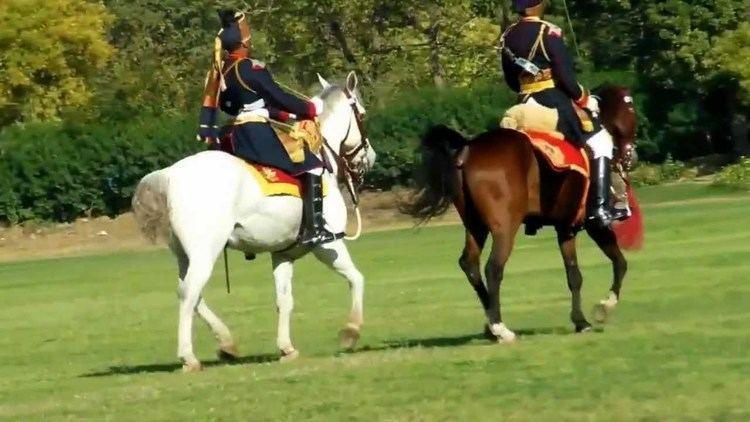 61st Cavalry (India) httpsiytimgcomviyp6JxR7VOsmaxresdefaultjpg
