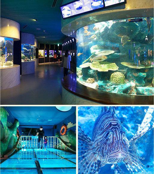 63 Seaworld Kenterin Landmark of Seoul 63 Square