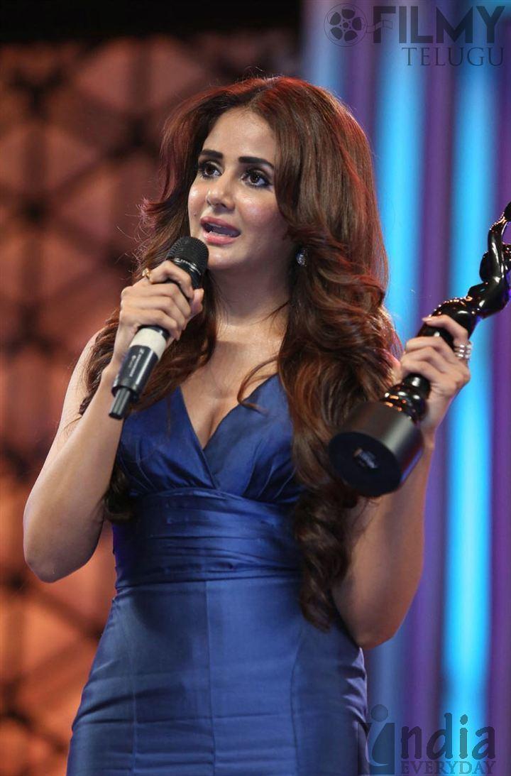 63rd Filmfare Awards South 63rd Filmfare Awards South 2016 Awards Photos