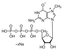 7-Methylguanosine 7Methylguanosine 5triphosphate sodium salt 85 HPLC Sigma