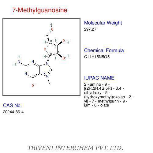 7-Methylguanosine 7Methylguanosine Expired 7Methylguanosine Expired