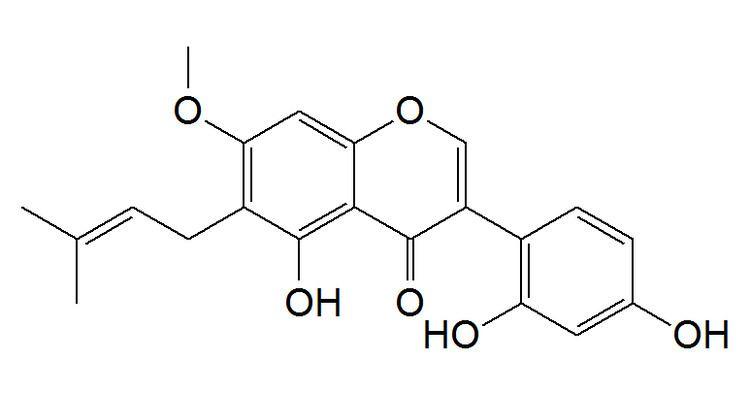 7-O-Methylluteone