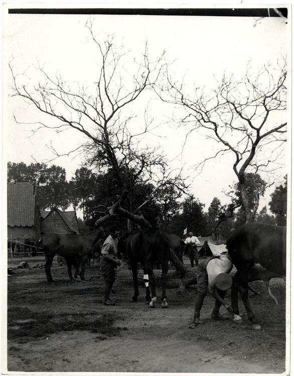 7th Indian Cavalry Brigade
