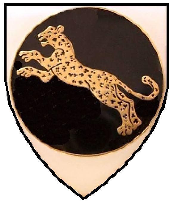 911 Battalion (SWATF)