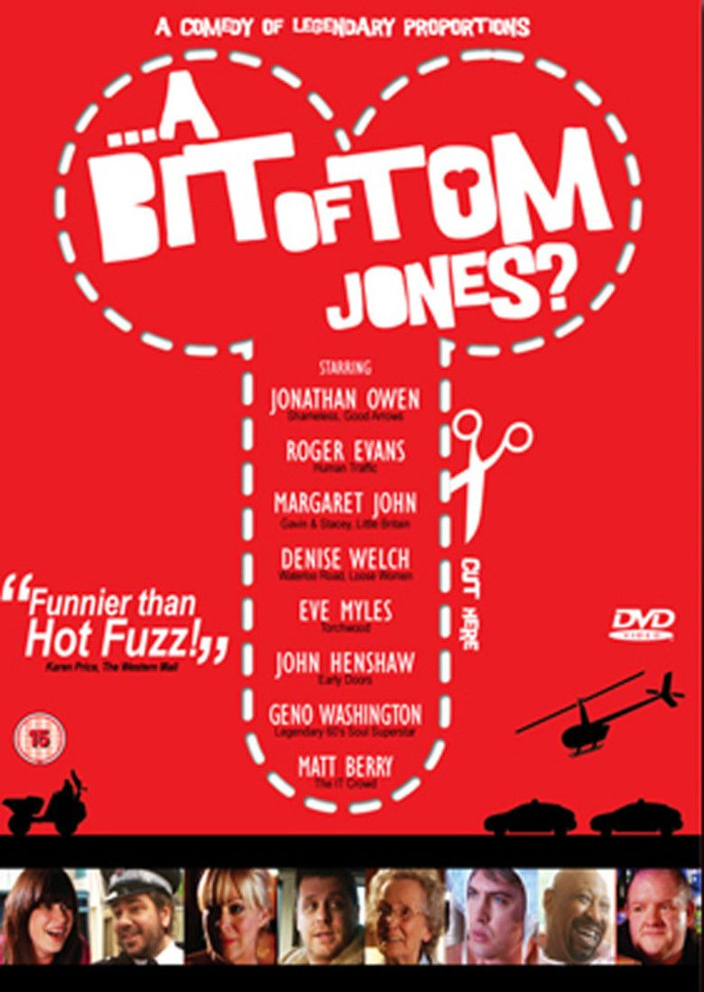A Bit of Tom Jones movie poster