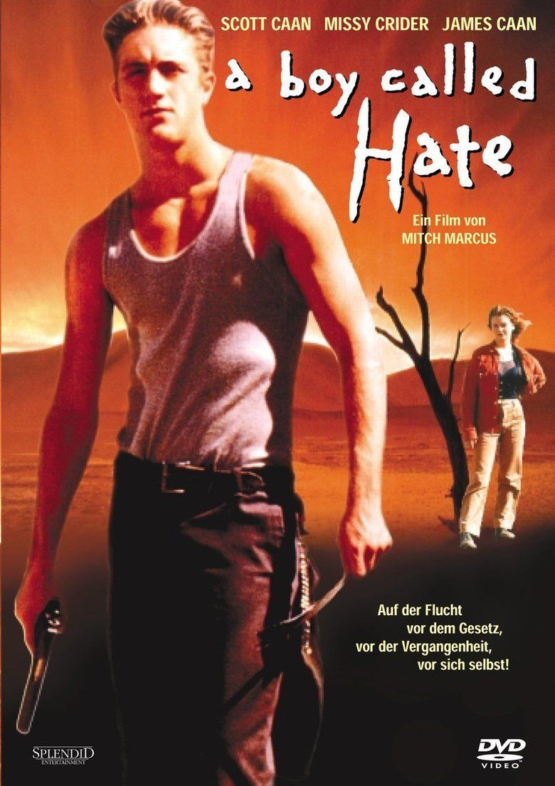 A Boy Called Hate movie poster