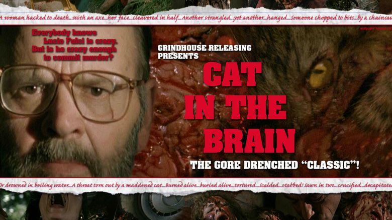 A Cat in the Brain movie scenes