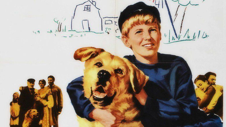 A Dog of Flanders (1960 film) movie scenes