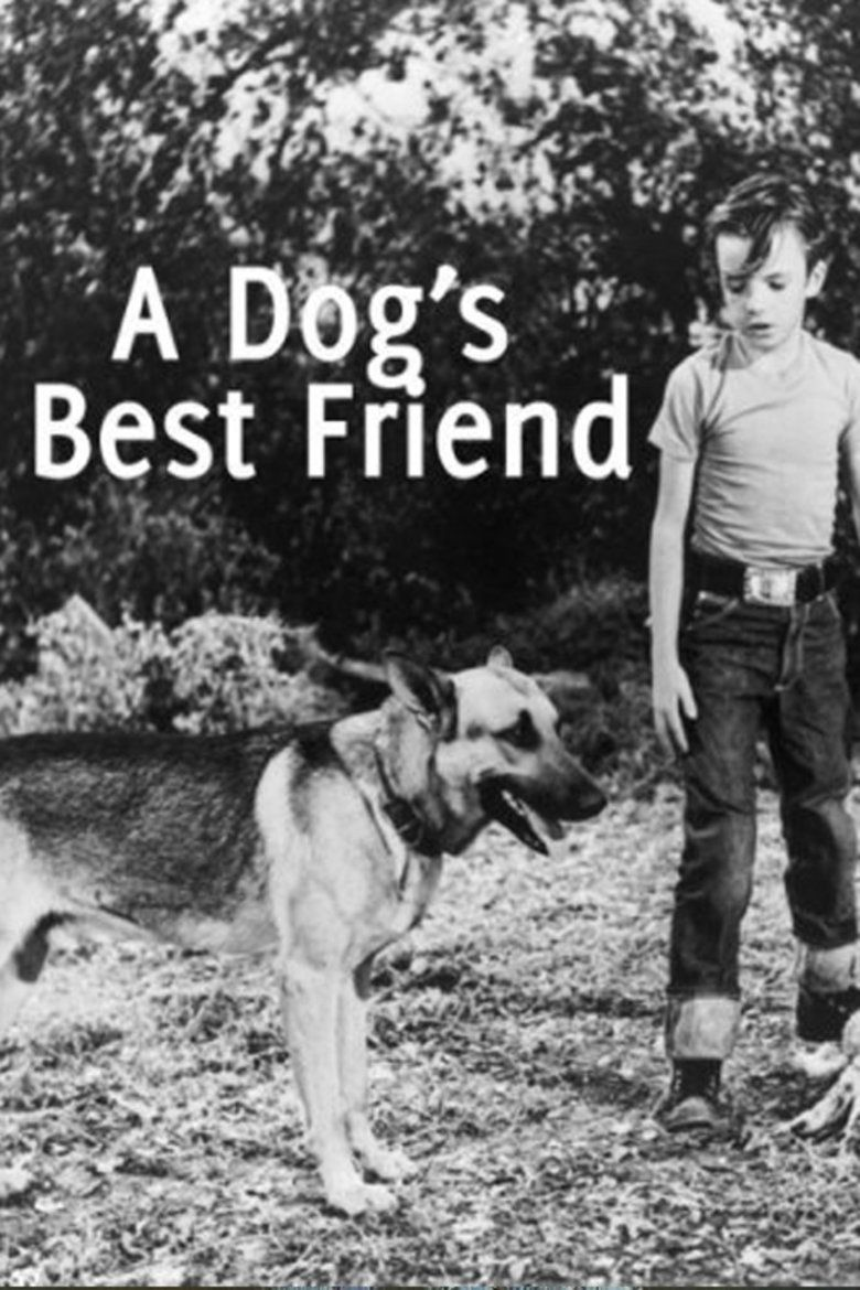 A Dogs Best Friend movie poster
