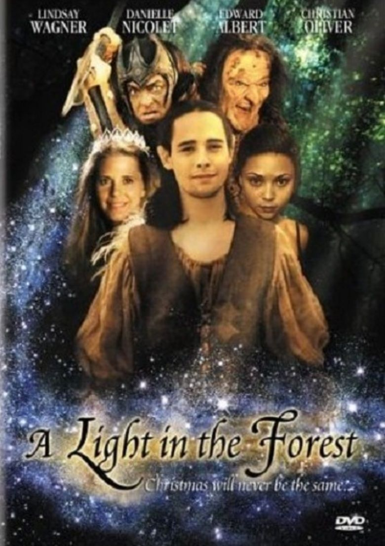 A Light in the Forest movie poster