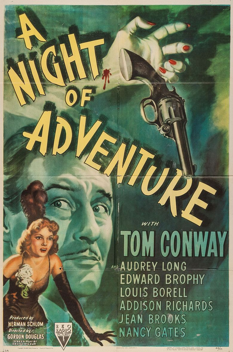 A Night of Adventure movie poster