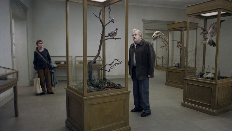 A Pigeon Sat on a Branch Reflecting on Existence movie scenes