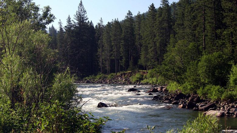 A River Runs Through It (film) movie scenes