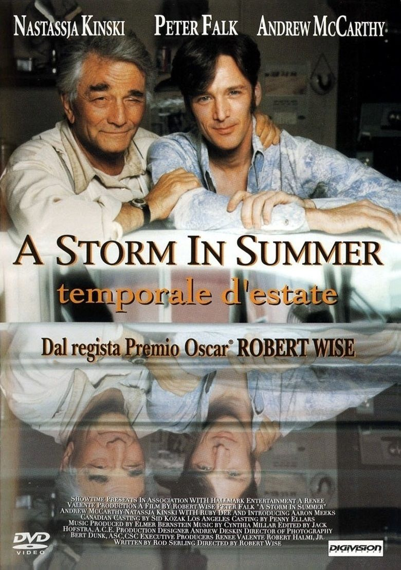 A Storm in Summer movie poster