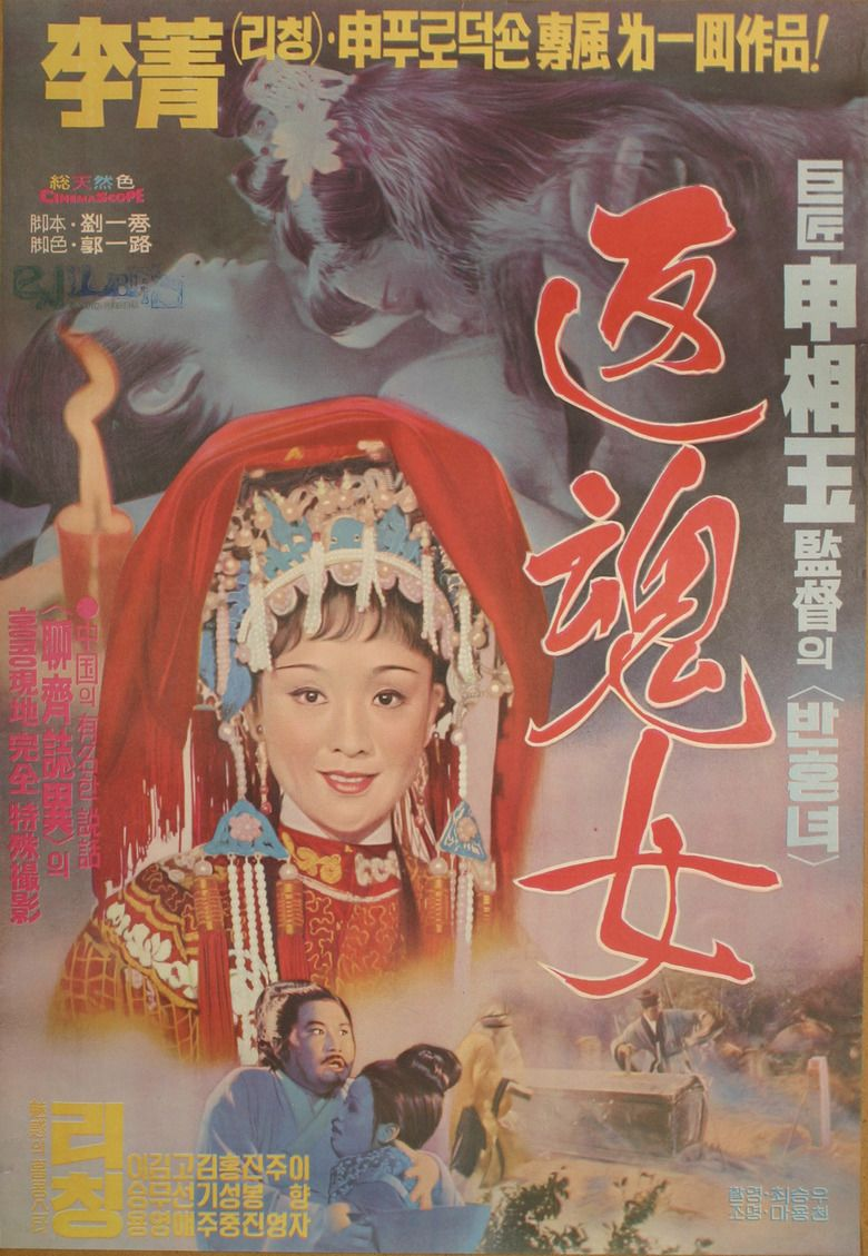 A Woman with Half Soul movie poster
