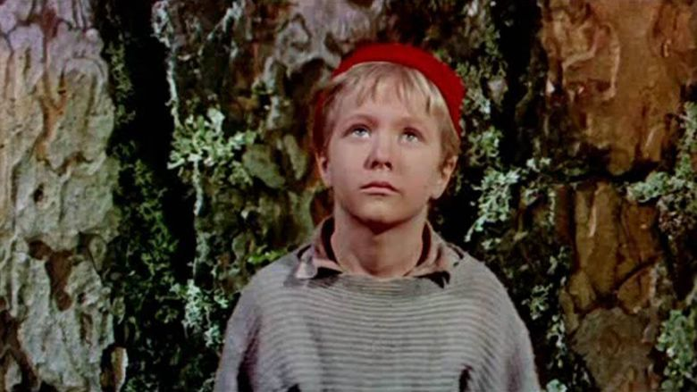 Adventures of Nils Holgersson movie scenes