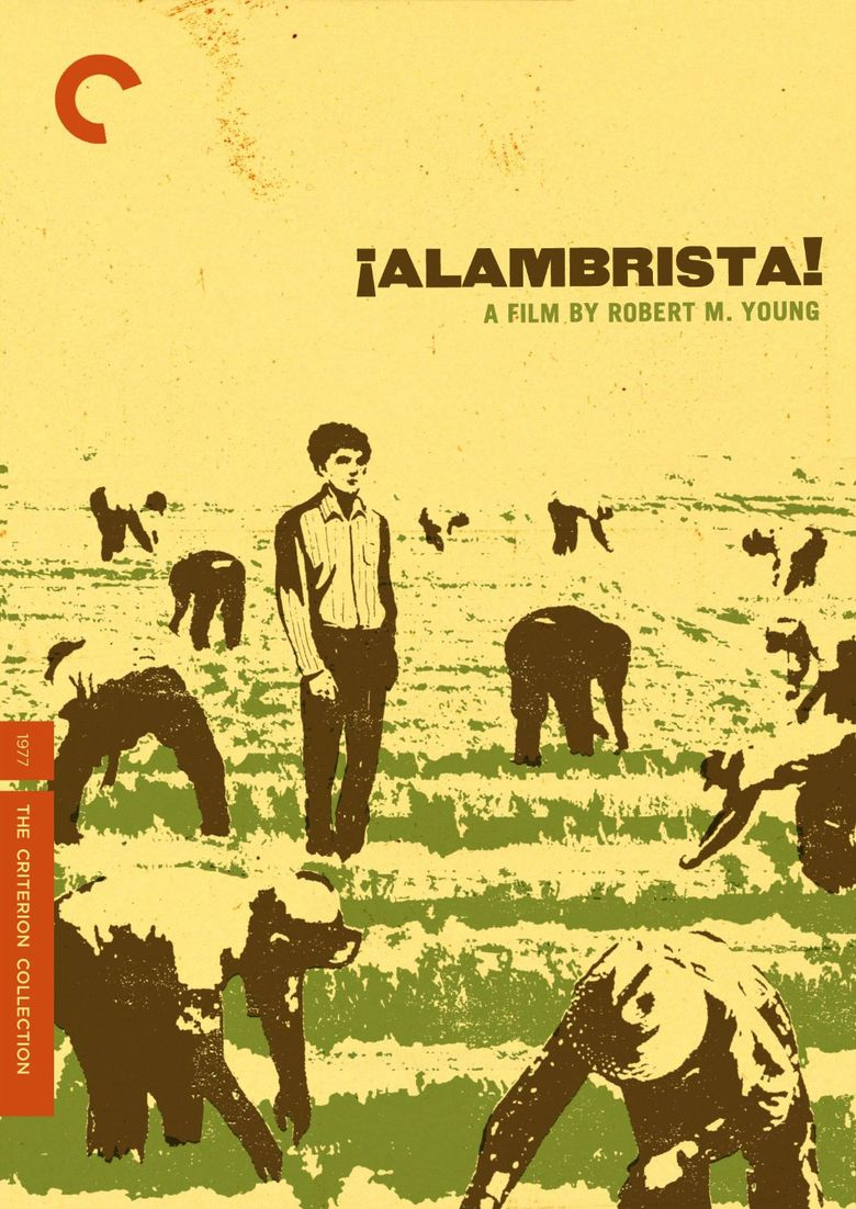 Alambrista! movie poster