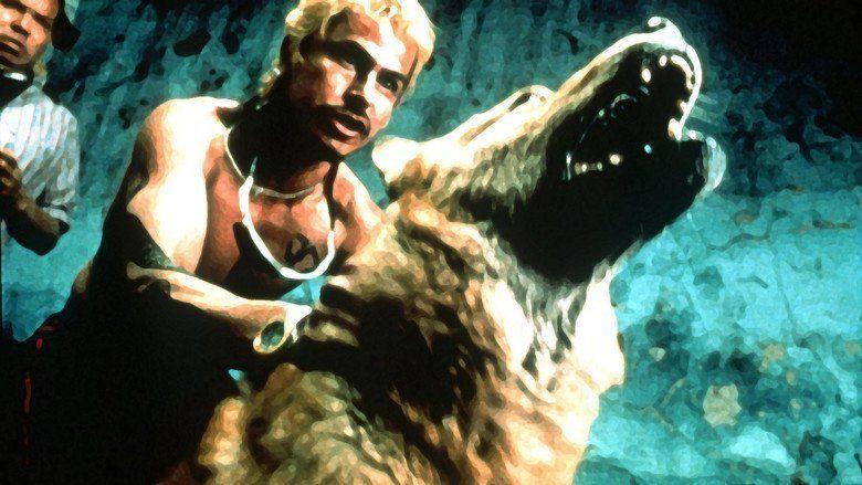 Amores perros movie scenes