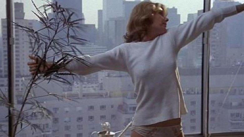 An Unmarried Woman movie scenes