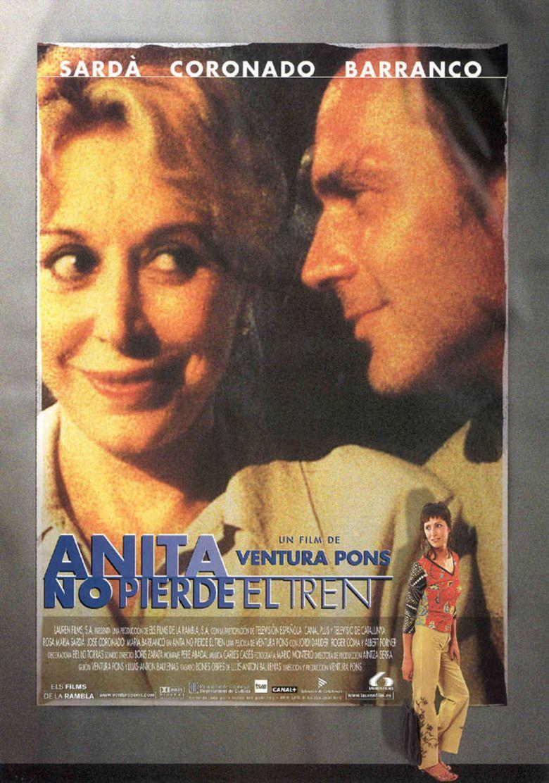Anita Takes a Chance movie poster