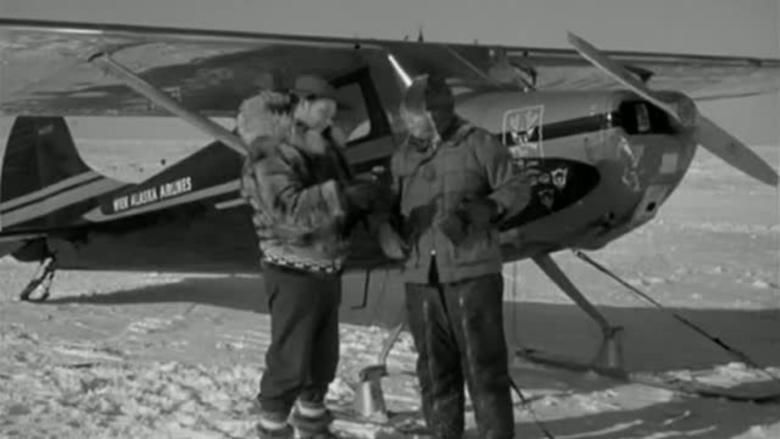Arctic Flight movie scenes