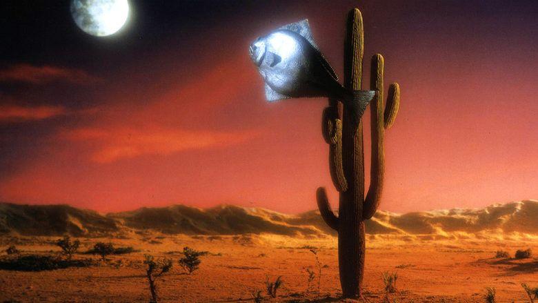 Arizona Dream movie scenes