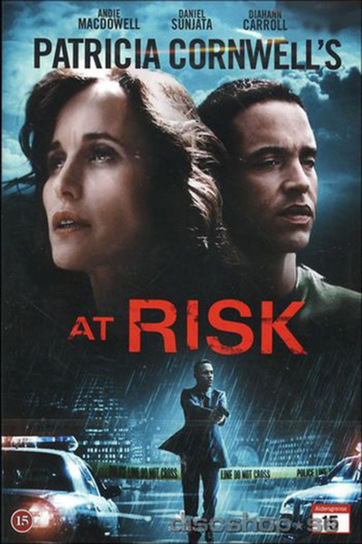 At Risk (2010 film) movie poster