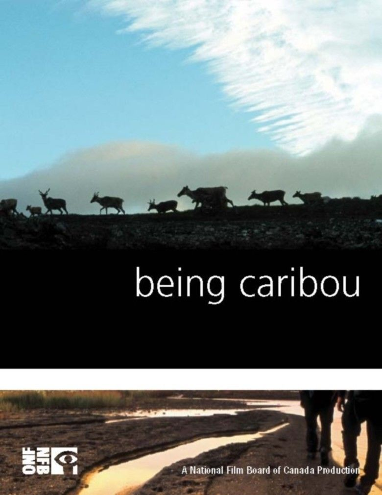 Being Caribou movie poster