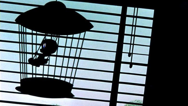 Birds Anonymous movie scenes