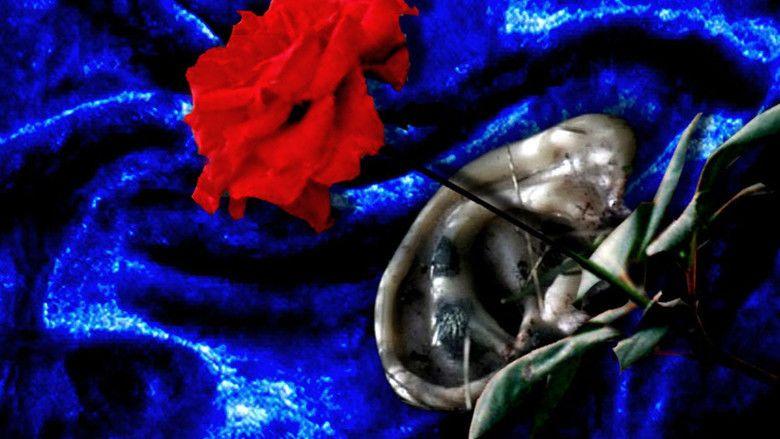 Blue Velvet (film) movie scenes