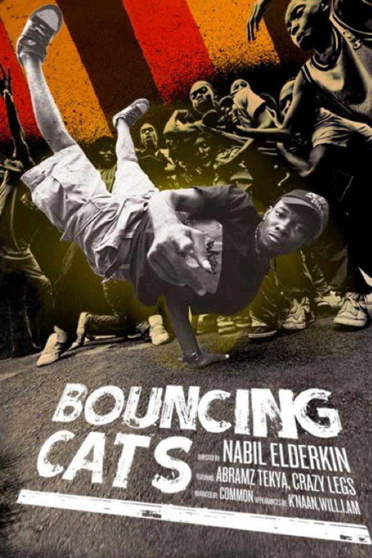 Bouncing Cats - Alchetron, The Free Social Encyclopedia