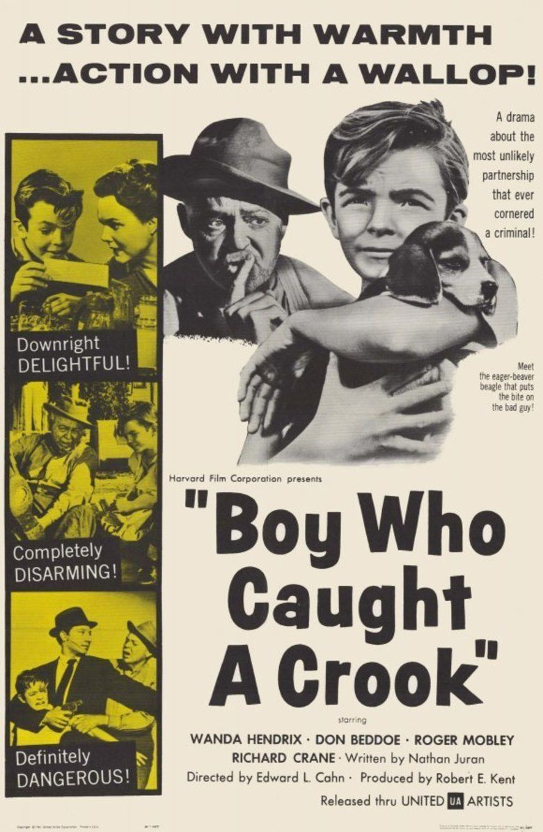 Boy Who Caught a Crook movie poster