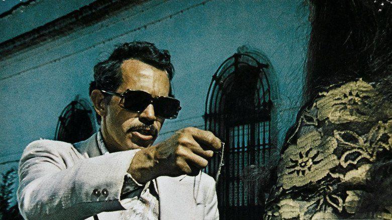 Bring Me the Head of Alfredo Garcia movie scenes