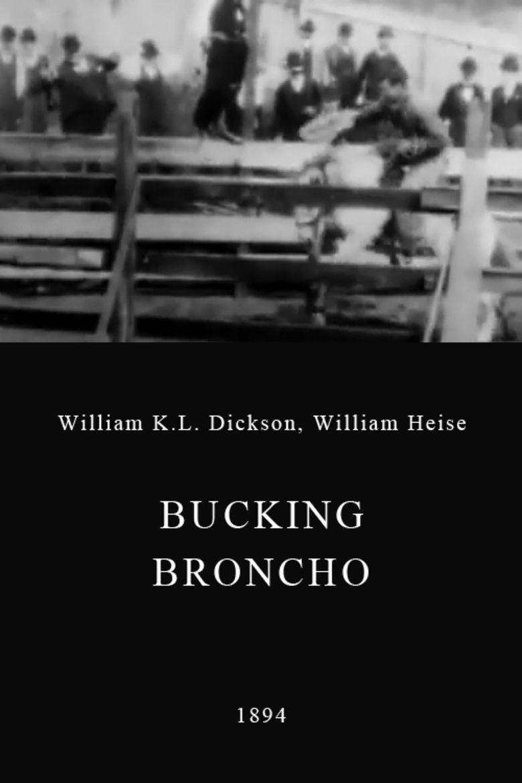 Bucking Broncho movie poster