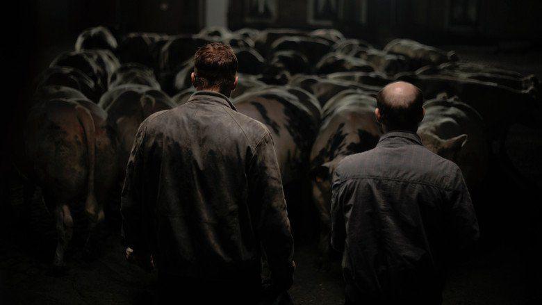 Bullhead (film) movie scenes