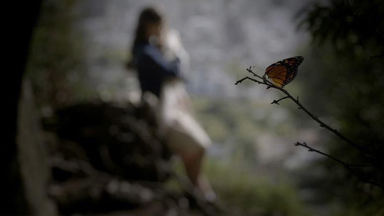 Butterfly (2015 film) movie scenes