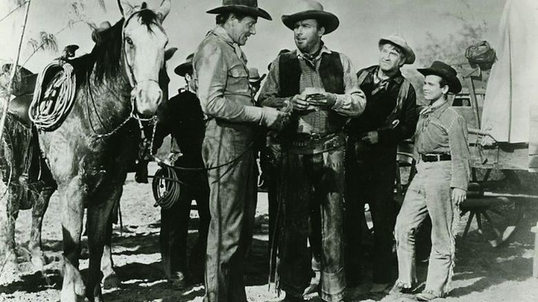 Cattle Drive movie scenes