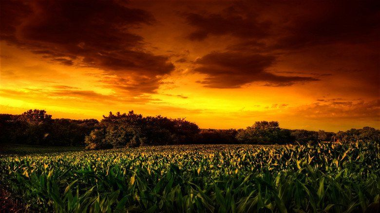 Children of the Corn II: The Final Sacrifice movie scenes