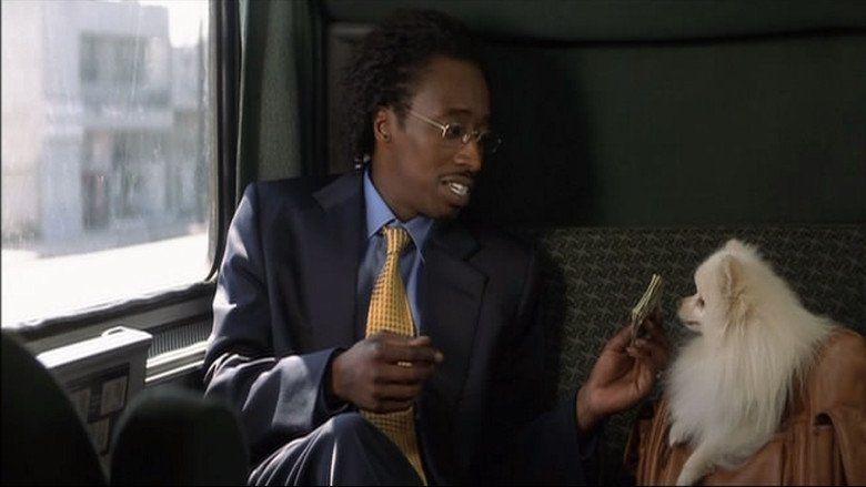 Double Take (2001 film) movie scenes