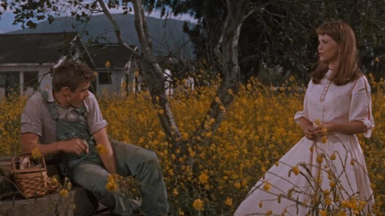 East of Eden (film) movie scenes
