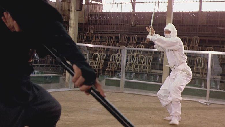 Enter the Ninja movie scenes