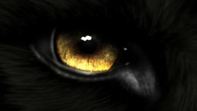 Eyes in the Dark movie scenes