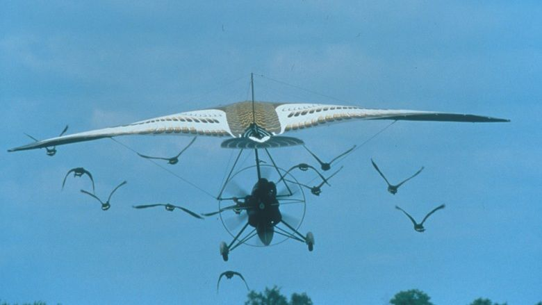 Fly Away Home movie scenes