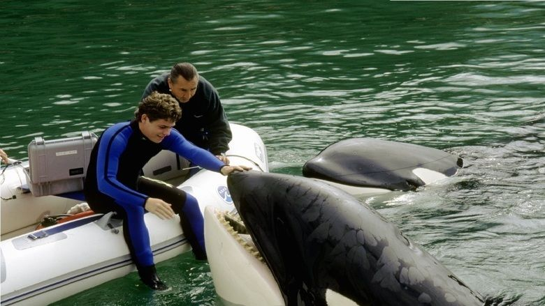 Free Willy 3: The Rescue movie scenes