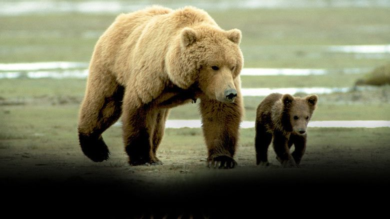 Grizzly Man movie scenes
