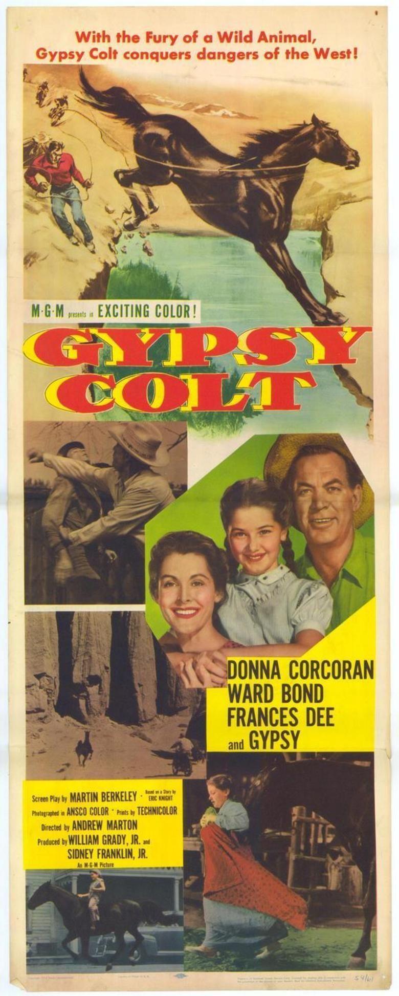 Gypsy Colt movie poster