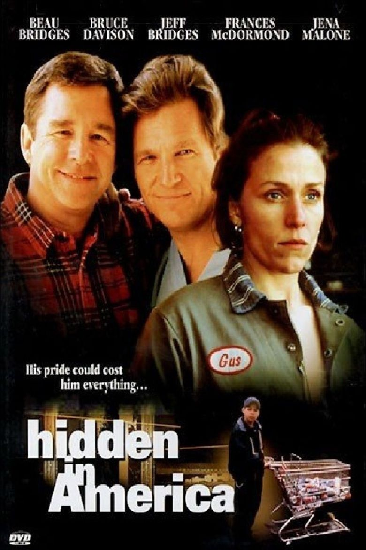 Hidden in America movie poster